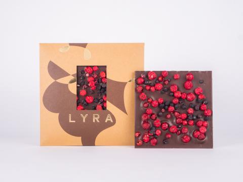 lyra - dark - nasa